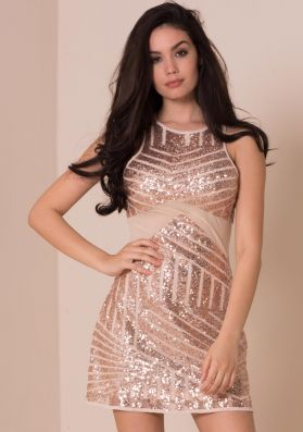 Destiny Nude Sequin Mesh Panel Mini Dress